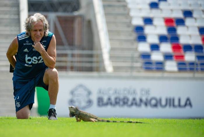 Iguana foi atração antes de treino do Flamengo na Colômbia
