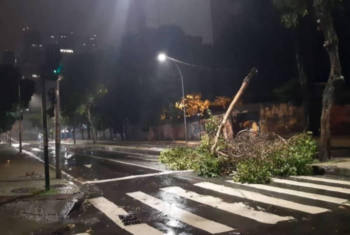 Queda de árvore na Avenida República do Paraguai, altura da Avenida Mem de Sá, na Lapa, Região Central do Rio