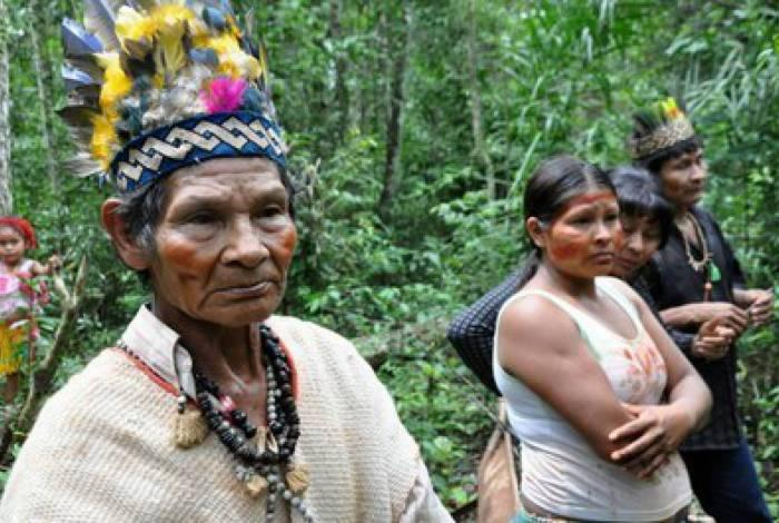 Indígenas de Laranjeira Ñanderu