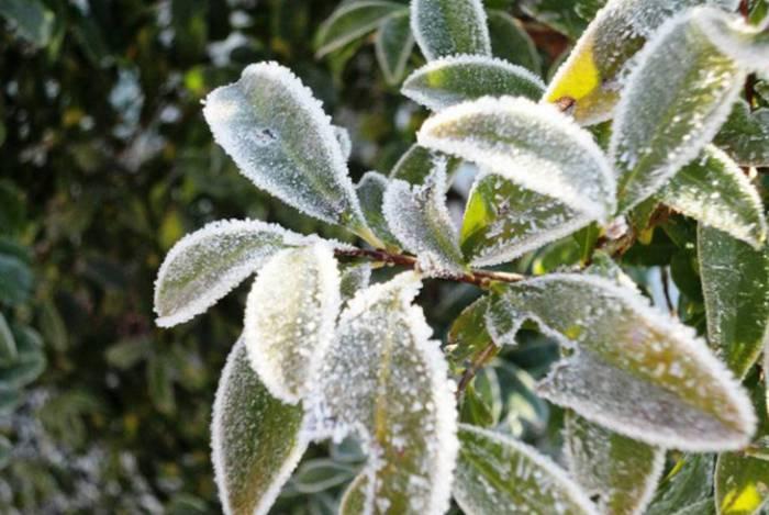 Baixas temperaturas chegaram com antecedência à cidade. Meteorologistas avisam que inverno será rigoroso na serra
