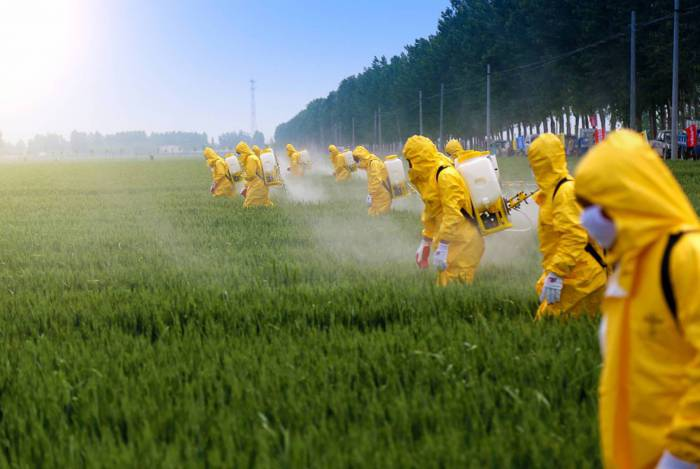 Agrotóxicos proibidos em diversos países são utilizados no Brasil