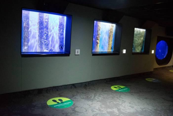 AquaRio terá novo horário de funcionamento e novos protocolos