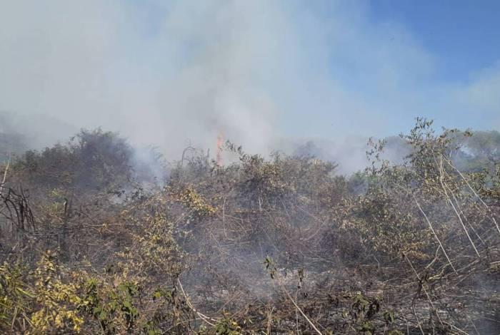 Mato Grosso estima que uma área de 204 mil hectares já tenha sido atingida pelo fogo nos municípios de Barão de Melgaço e Poconé