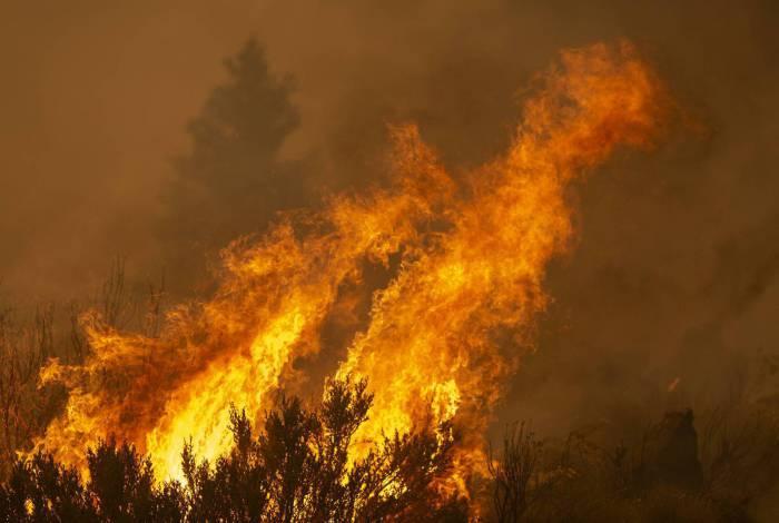 Incêndios nos Estados Unidos já mataram 15 pessoas