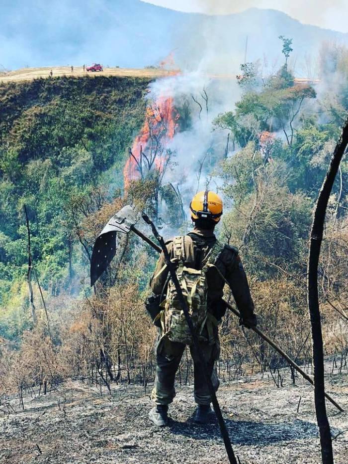 Fogo na mata no distrito da Posse continua; brigadistas lutam para extinguir as chamas