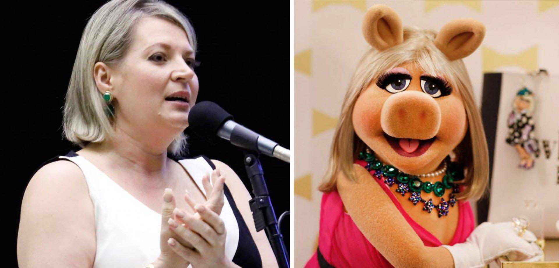 Joice Hasselmann é comparada por bolsonaristas à personagem Miss Piggy, dos Muppets, e decidiu usar isso a seu favor. Mas Disney não autorizou uso da imagem - Maryanna Oliveira/Câmara dos Deputados | Divulgação