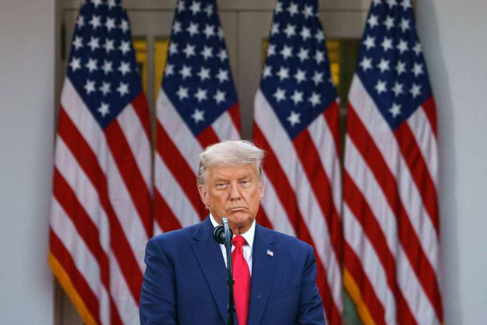 Trump comenta luta de Victor Belfort e aproveita para criticar Biden