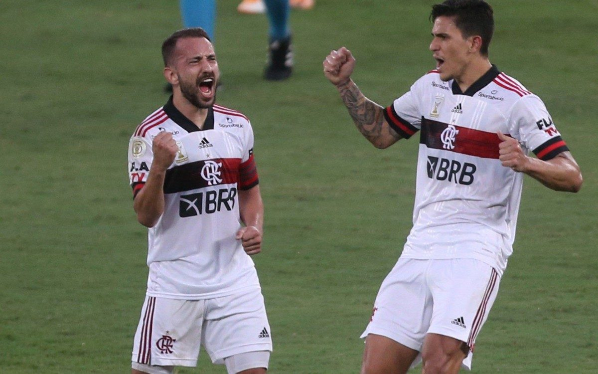 Com gol de Éverton Ribeiro, Flamengo vence o Botafogo no Nilton Santos |  Esporte | O Dia