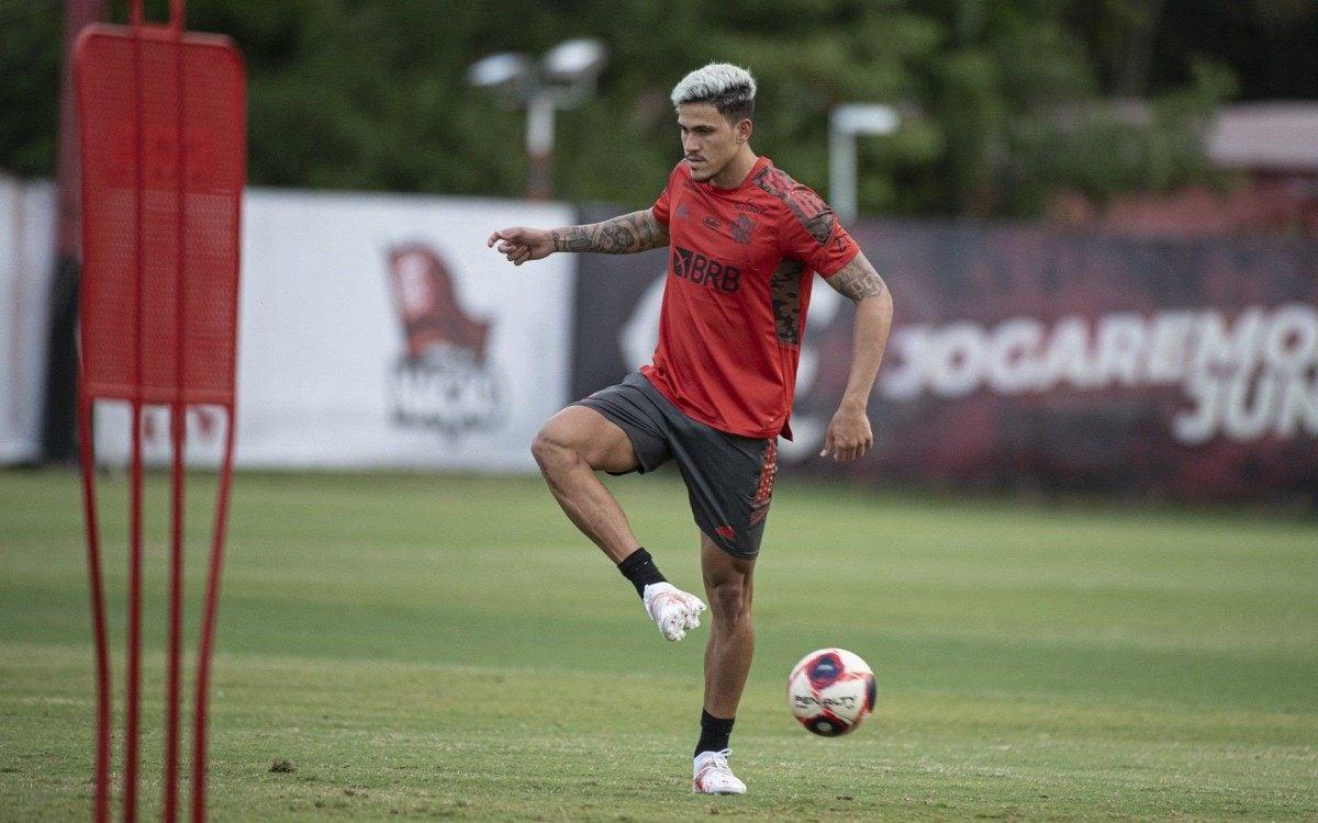 Dupla Pedro e Michael ganha mais pontos com Ceni no Flamengo