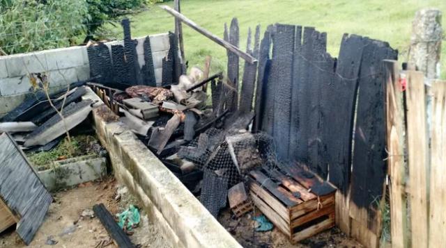 Menino de 10 anos morre em inc�ndio dentro de casa