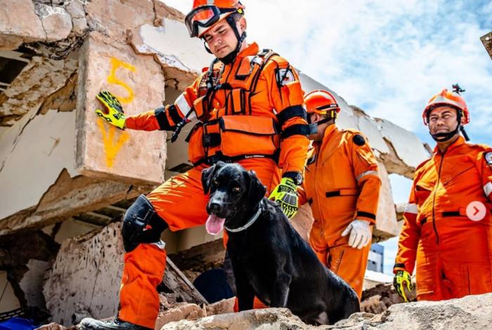 De acordo coma a Secretaria de Segurança, os trabalhos de busca das vítimas do desabamento do continuam ininterruptamente até que todas sejam retiradas dos escombros
